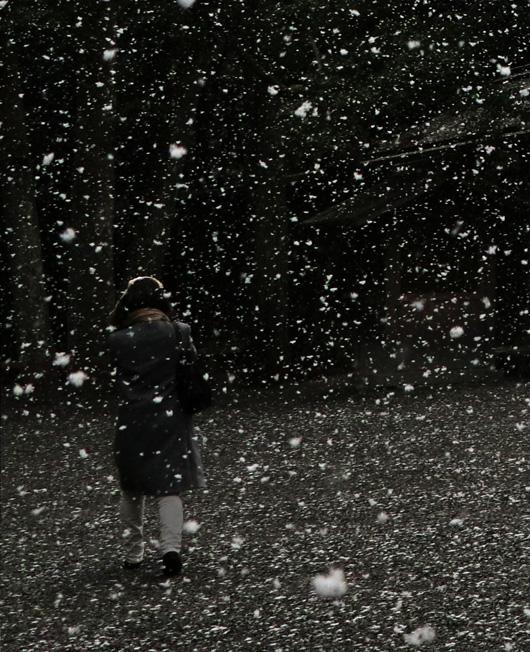snow_MG_3527.jpg