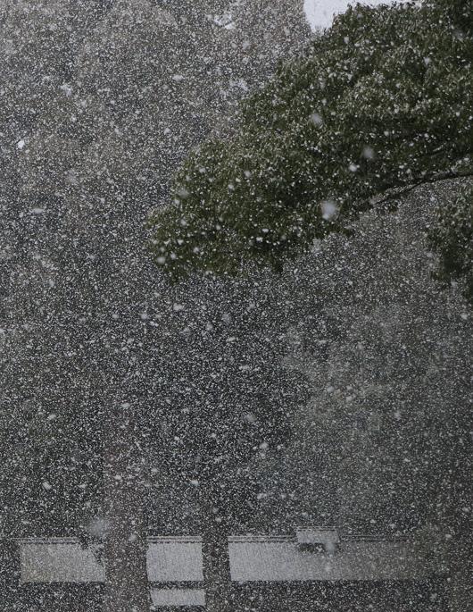 snow_MG_3545.jpg