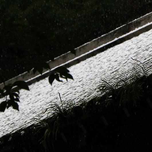snow_MG_3569.jpg